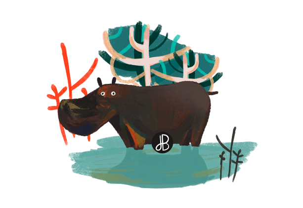 hippopotame-illustration